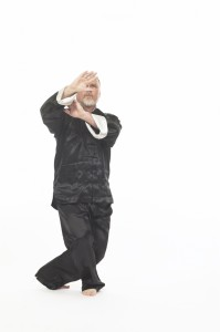 Ian Deavin performs chen style Laojia form