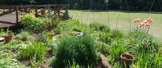 Letchworth Centre for Healthy Living garden