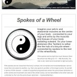 Tai Chi - Spokes of a Wheel - 18th November 2014 newsletter