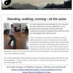 Standing, walking, running - all the same, 10th January 2017 Newsletter